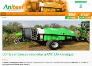 diseño web responsive Aniteaf